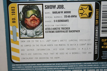 G.I. Joe: Pursuit of Cobra - Snow Job