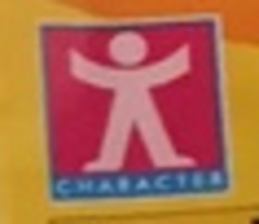 Character Options Ltd.