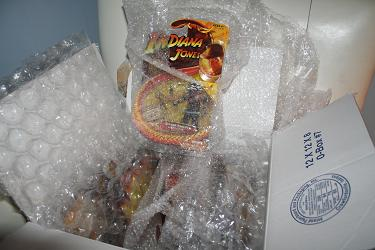 Hasbro Indiana Jones - Temple of Doom DoctorKent case break