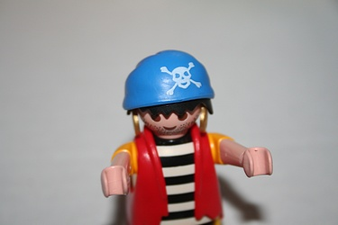Playmobil Advent Calendar - 2012